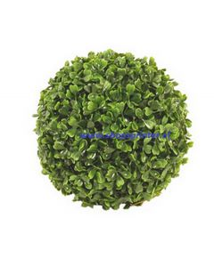 Buxus bol rond 400 mm