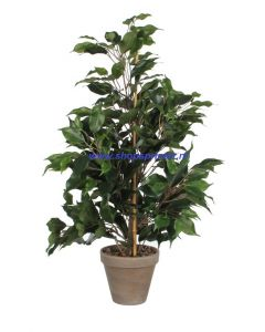 Ficus Exotica kunstplant  650 mm