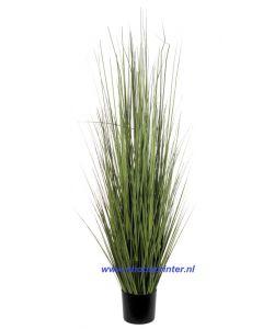 Helmgras kunstplant  1550 mm